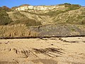 Cliffs below Holworth House, Ringstead Bay - geograph.org.uk - 266883.jpg