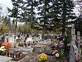 Cmentarz św. Anny – Zarzew w Łodzi (1).JPG