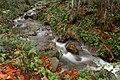 Cold Creek (52340912).jpeg