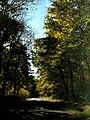 Conemaugh Gap Early Fall 2016 - panoramio - Ron Shawley (27).jpg