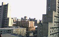 Overlooking Coney Island downtown