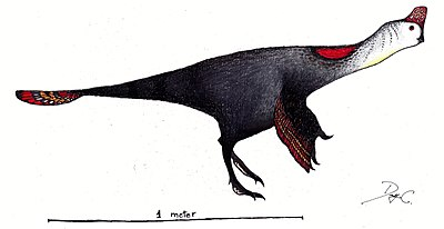 Corythoraptor restoration.jpg