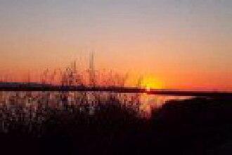 Cosumnes River Preserve - Image: Cosumnes River Preserve