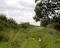 Cow pastures lane. - geograph.org.uk - 529230.jpg