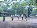 Cricket at National Park (289441129).jpg