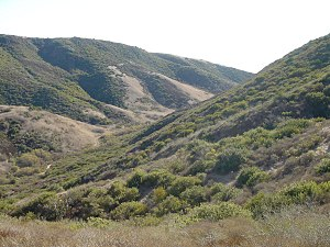 Crystal Cove State Park - Image: Crystalcovecanyon