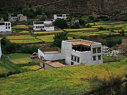 Traditional Kham houses
