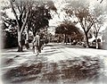 Da01-02 - Charles Ewart Darwent - Bubbling Well Road, Shanghai - 1902.jpg