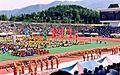 Daegu Duryu Park festival Sepember 2001.jpg
