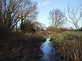 Dammed stream near Great Gap - geograph.org.uk - 317466.jpg