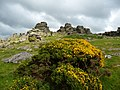 Dartmoor National Park , Hound Tor and Bush - geograph.org.uk - 1416146.jpg