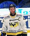 David Petrasek AIK-HV71 2014-01-02.jpg