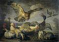 David de coninck-aves-prado.jpg