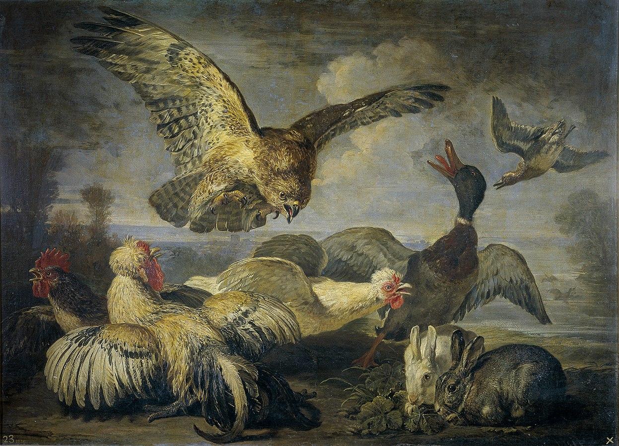 Un milano y varias aves