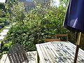 Deck - Flickr - peganum.jpg