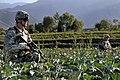 Defense.gov photo essay 100918-A-3603J-076.jpg