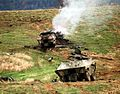 Destroyed Serbian BOV-APCs (1996).JPEG