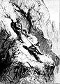 Die Gartenlaube (1892) b 361.jpg