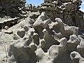 Differentially cemented & eroded sandstone (member C, Uinta Formation, Eocene; Fantasy Canyon, Utah, USA) 13 (24751050171).jpg