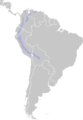 Distribution.metallura.tyrianthina.png