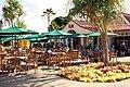 Dole Pineapple Plantation (15132845334).jpg