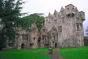 Donegal Castle - Donegal Castle showing keep, on right, and Jacobean wing