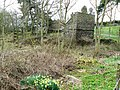 Doocot and daffodils - geograph.org.uk - 754946.jpg