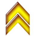 Double arrow yellow up.png