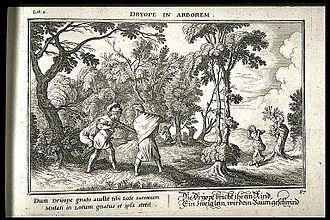 Dryope (daughter of Dryops) - Image: Dríope transformada em lótus