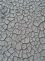 Dried land cracked by irvin calicut.jpg