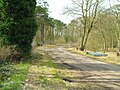 Driveway leading up towards Hartwood mental hospital - geograph.org.uk - 150250.jpg