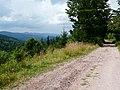 Droga na Wielką Sowę z przełęczy Walimskiej - panoramio.jpg