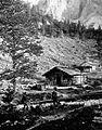 Drvarska koča v gozdovih barona Borna na Dolgi njivi pod Košuto.jpg