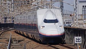 Tanigawa (train) - A Max Tanigawa service in March 2017 operated by an E4 series train