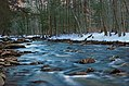 East Branch Fishing Creek (Revisited) (5) (31526206660).jpg