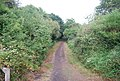 Eden Valley Path along the Straight Mile, Haysden Country Park - geograph.org.uk - 2046779.jpg