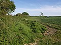 Edge of hillfort - geograph.org.uk - 450544.jpg