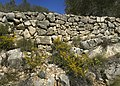 El Perelló - Wall.jpg