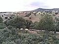 El pueblo de Solana de Rioalmar.jpg