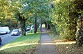 Elevated path next to A21 - geograph.org.uk - 998641.jpg