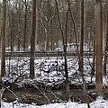 Elizabeth Township, PA, USA - panoramio (5).jpg