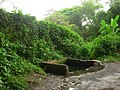 En Izalco el agua brota por todos lados - panoramio.jpg