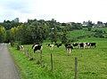 Englancourt (depuis la route de Marly-Gomont) 1.jpg