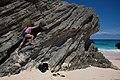 Eolianite in Bermuda (5810173783).jpg