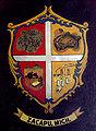 Escudo de Zacapu.jpg