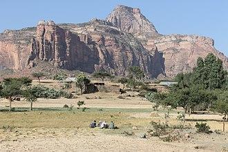 Hawzen (woreda) - Men harvesting tef in front of Megab escarpment (2017)