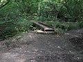Everlasting footbridge in Nutham Wood - geograph.org.uk - 1419240.jpg