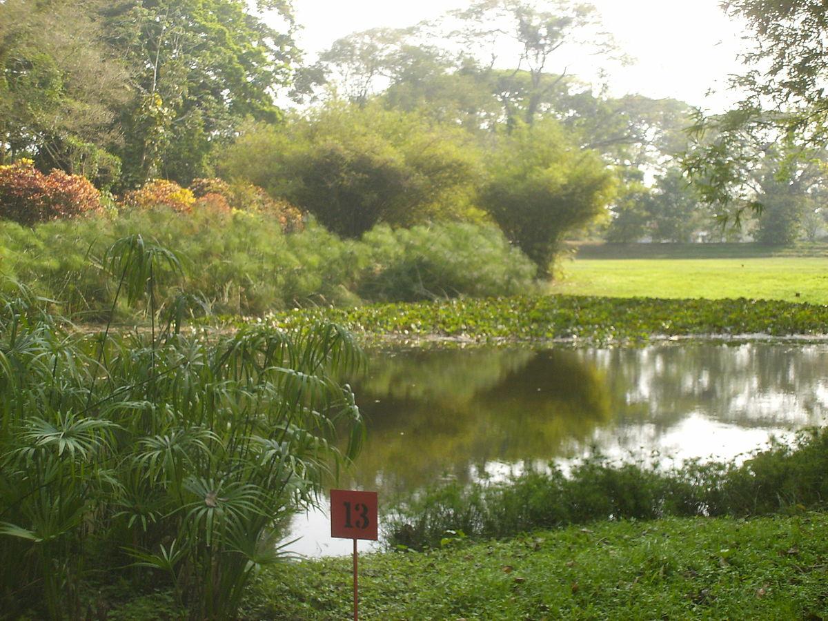 parque de la ex tica flora tropical wikipedia la