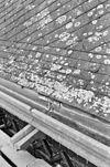 exterieur (tijdens restauratie), middenbeuk, dakbedekking, detail - delft - 20283038 - rce