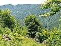 Eyachtal - panoramio.jpg
